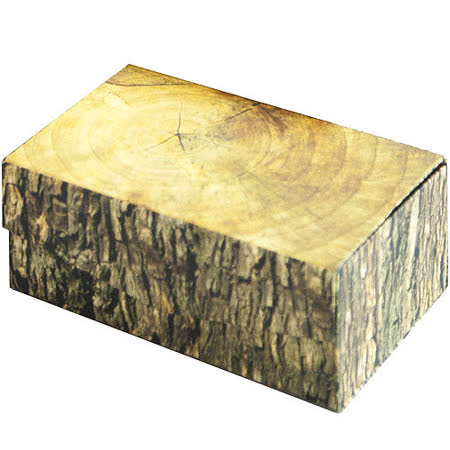 《KIKKERLAND》不是樹幹收納盒(M)