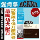 《加拿大ACANA愛肯拿~挑嘴幼犬~放養雞肉+低升糖燕麥》340g