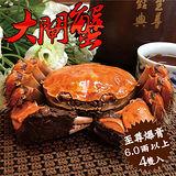 買4送2【台北濱江】至尊爆膏大閘蟹4隻裝(6.0兩以上/隻)