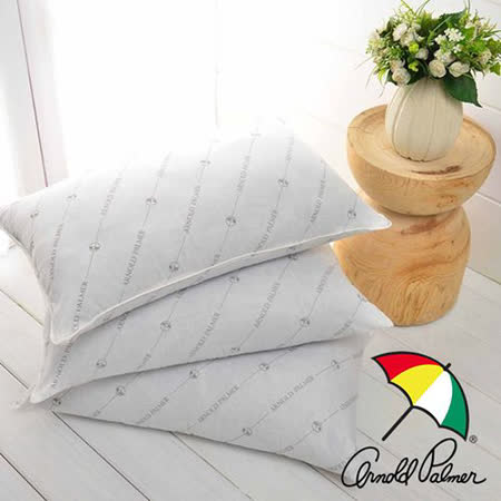 【Arnold Palmer雨傘】蓄溫保溫竹炭枕(2入)