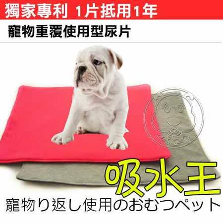 拜客重覆使用超吸水寵物尿墊S號4-7kg顏色隨機(環保 省錢)