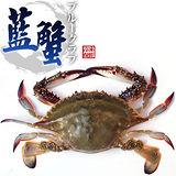 【台北濱江】生凍藍蟹6隻裝(160~200g/隻)
