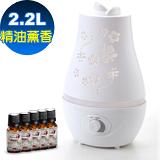 Warm雙噴頭香氛負離子超音波水氧機(W-220白)+贈100%單方精油10mlx5瓶