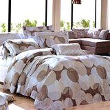 【Betrise圓點風尚】頂級100%加大60支長絨棉四件式兩用被床包組