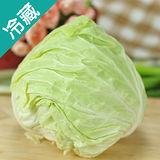 高山高麗菜2粒(900g±5%/粒)