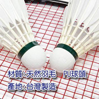 KAWASAKI羽毛球藍筒12入