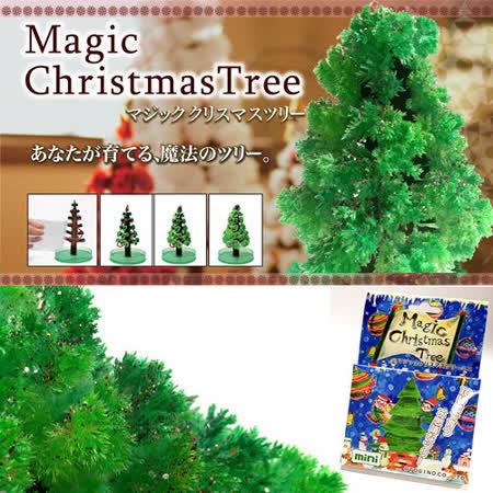 DIY 神奇魔法開花成長聖誕樹+滿天星空立體夜光組