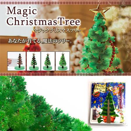DIY 神奇魔法開花成長聖誕樹-豪華版(附裝飾品)+滿天星空立體夜光組