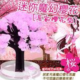 DIY迷你魔幻櫻花成長樹(居家櫻花祭)+滿天星空立體夜光組