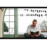 【ORIENTAL創意】電線上的鴿子