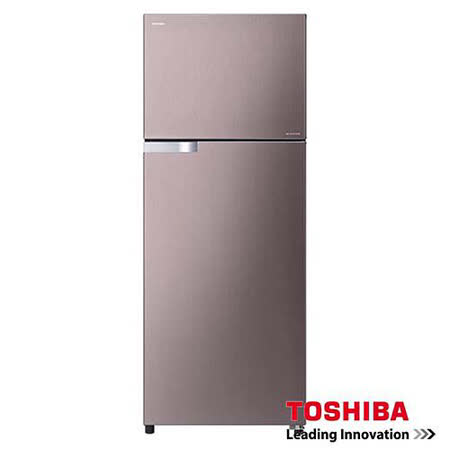 TOSHIBA東芝359L雙門變頻抗菌冰箱GR-T41TBZ(DS)