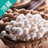 台灣雙享菇3包(100g±5%/包)