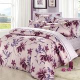 【Arnold Palmer雨傘牌】陶醉粉紫-60紗精梳純棉床罩雙人加大七件組.