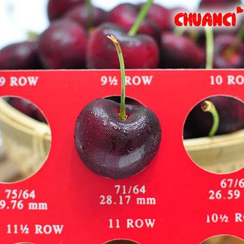 買一送一【川琪】智利櫻桃XJ級9.5Row(1kg)