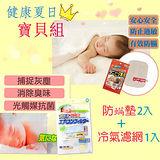 【健康夏日寶貝組】防螨墊(2入)+冷氣濾網(1入)-日本TOWA東和產業