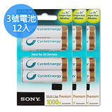 SONY 低自放3號新型2100mAh充電電池(12顆入)