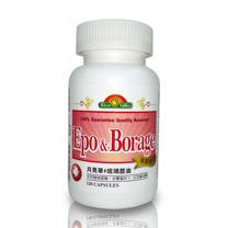 美國培恩月見草+琉璃苣油(120粒/瓶)2入裝