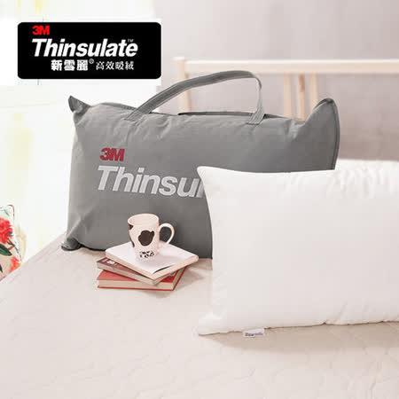 【Anson】3M Thinsulate新雪麗抗菌枕(單入)