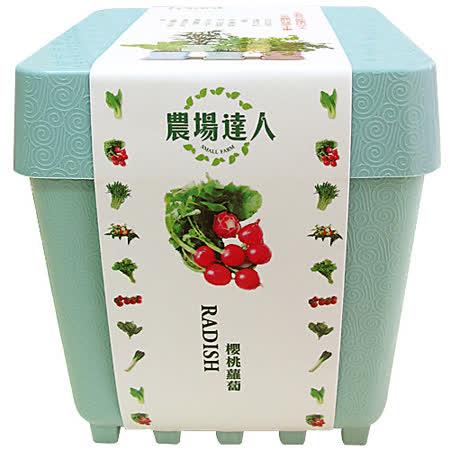 【樂高小農場】櫻桃蘿蔔