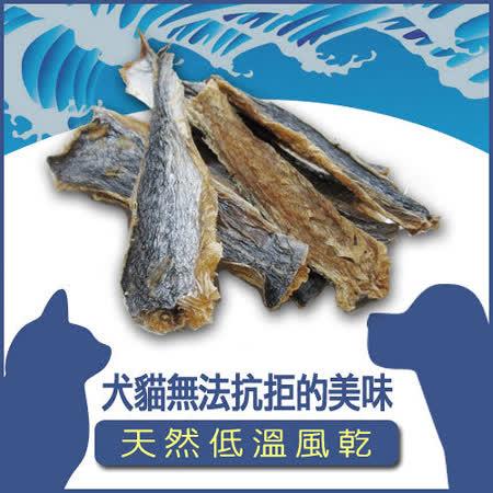 北海日式《鰆魚一夜干(大)100G*2入》犬貓適用