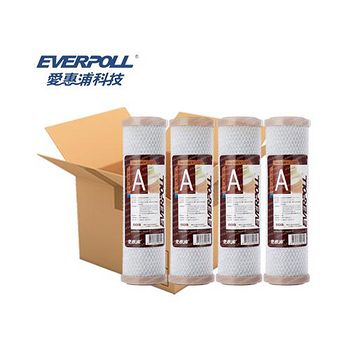 EVERPOLL 愛惠浦科技 CTO 壓縮碳濾心 EVB-C100A (25支/箱)