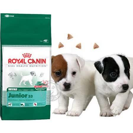 法國皇家 APR33 2kg 小型幼犬