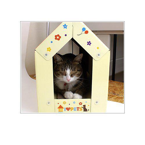 貓貓的最愛 可愛紙貓屋 貓抓板