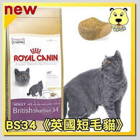 法國皇家 BS34《英國短毛貓》飼料 4kg