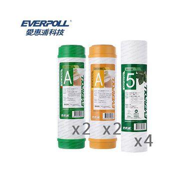 EVERPOLL愛惠浦科技 一年份濾心 EVB-F105*4/EVB-U100A*2/EVB-M100A (8支組)