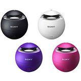 SONY NFC/藍牙防水喇叭 SRS-X1  公司貨 + 贈收音機