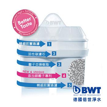 【BWT德國倍世】Mg2+鎂離子八週長效濾芯(三入組)