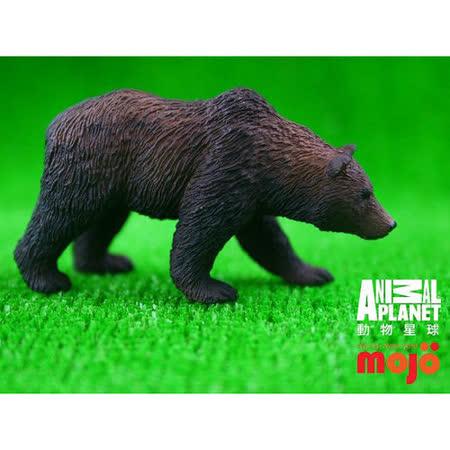 【MOJO FUN 動物模型】動物星球頻道獨家授權 - 灰棕熊