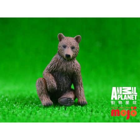 【MOJO FUN 動物模型】動物星球頻道獨家授權 - 灰棕幼熊