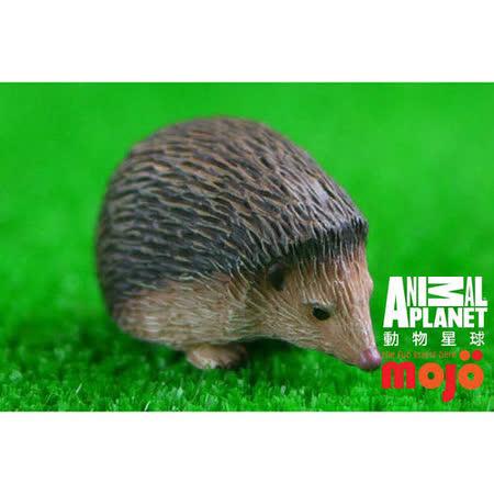 【MOJO FUN 動物模型】動物星球頻道獨家授權 - 刺蝟