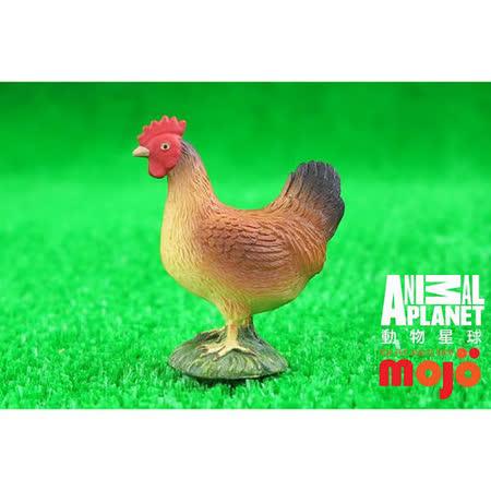 【MOJO FUN 動物模型】動物星球頻道獨家授權 - 母雞(站姿)