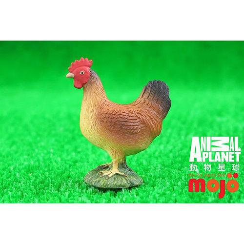 ~MOJO FUN 動物模型~動物星球頻道  ~ 母雞 站姿