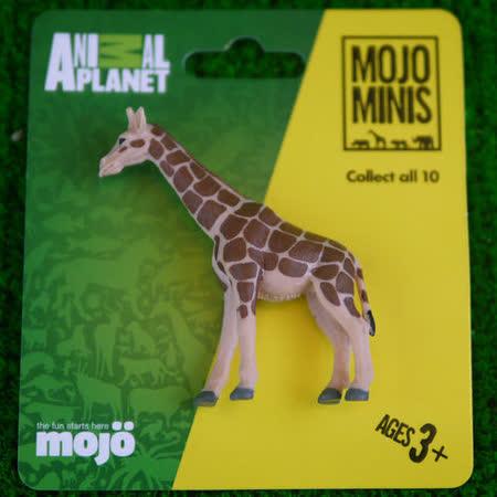 【MOJO FUN 動物模型】動物星球頻道獨家授權 - 迷你長頸鹿