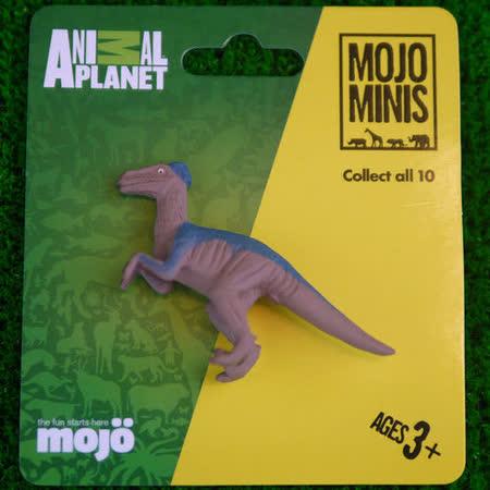 【MOJO FUN 動物模型】動物星球頻道獨家授權 - 迷你迅猛龍