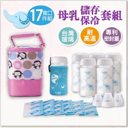 【A10017】Double love母乳運輸袋組(寬口徑母乳儲存瓶240ml6支+冰寶6片+奶瓶衣+保冷袋)+奶嘴環3組