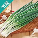 台灣青蔥2包(200g±5%/包)