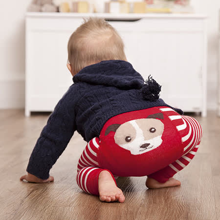 英國 JoJo Maman BeBe 圖案嬰幼兒內搭褲/保暖襪_紅白狗狗(JJP004)