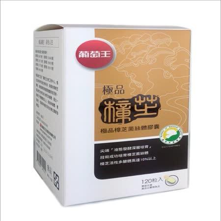 【葡萄王生技】極品樟芝王120粒 多醣體含量高達9%