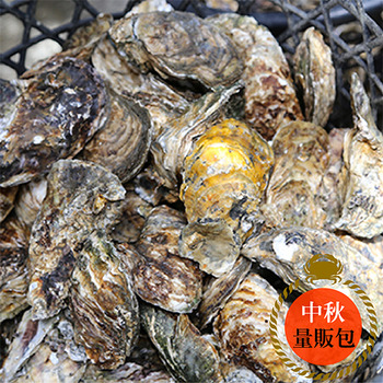 【梓官區漁會】東石現採帶殼牡蠣1公斤(家庭烤肉)