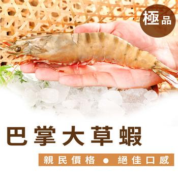 【梓官區漁會】巴掌野生大草蝦5尾入/共500g