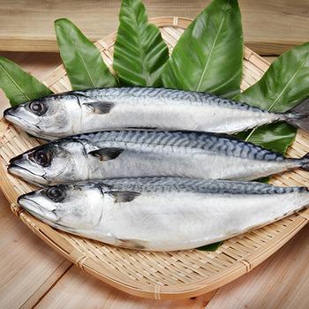 【梓官區漁會】挪威薄鹽花鯖魚(整尾) 400g