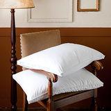 BBL 飯店式側立100%羽毛枕 (一對)
