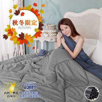精靈工廠 3M吸濕排汗專利雙色天然竹炭吸濕排汗被1.3kg (B0815-AS)