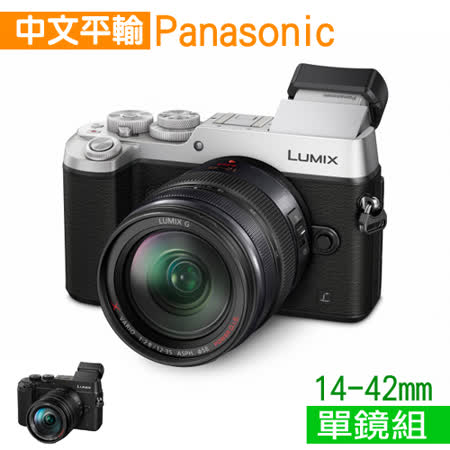Panasonic Lumix DMC-GX8 +14-42mm 4K超高清攝錄*(中文平輸)-送SD64G-C10記憶卡+強力大吹球+細纖維拭鏡布+細毛刷+數位清潔液+可拋式拭鏡紙+硬式保護貼