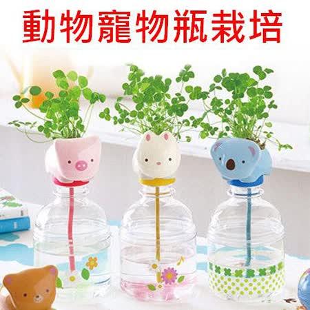 【PS Mall】四葉草水耕培植物 動物寵物瓶栽培_小熊 (J2268)