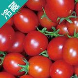 麻油寮鹽地小番茄2盒(600g±5%/盒)